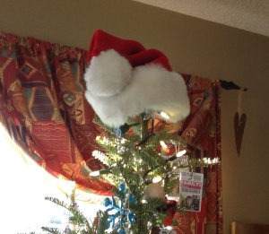 Will's Santa Hat