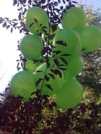 BD Balloons